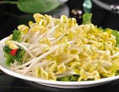 黄豆芽维生素B2含量高 绿豆芽清热解毒容易消化