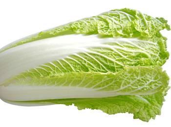 大白菜(白梗)
