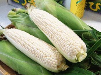 玉米(白,干)