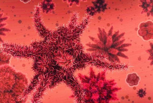 国家卫计委:我国将建三级致病菌的识别网