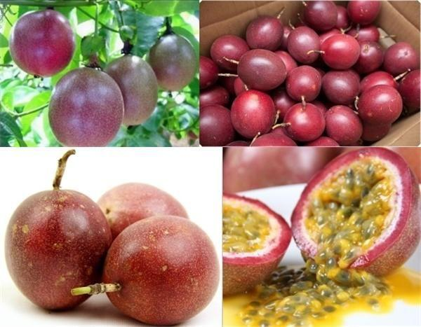 别傻傻吃苹果了,十个苹果都比不过它:排毒养颜、降压降脂、抗癌