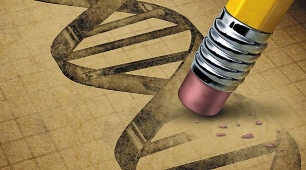 基因编辑,让你健康又聪明_拓诊卫生资讯
