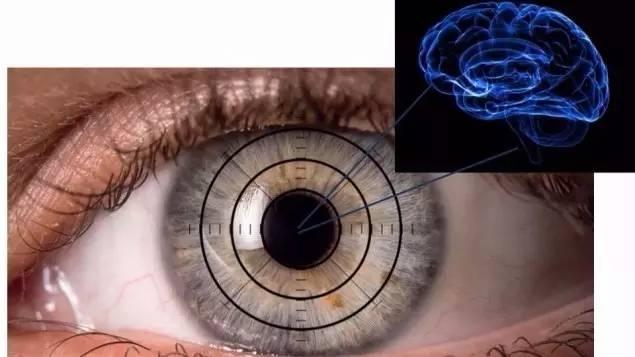 视网膜扫描能预测阿兹海默症