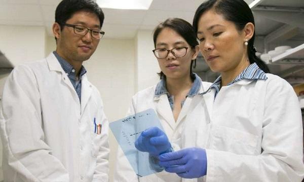 """最新发现,锌有望成为新一代抗癌""""神药"""",精准消灭癌细胞!"""