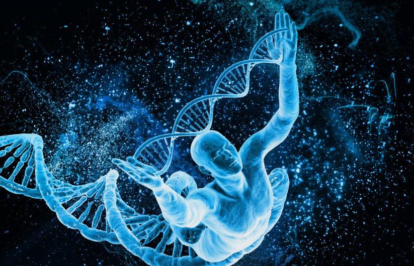 对抗最强抗生素耐药基因被发现