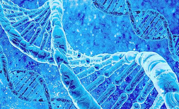 乳腺癌基因组揭秘